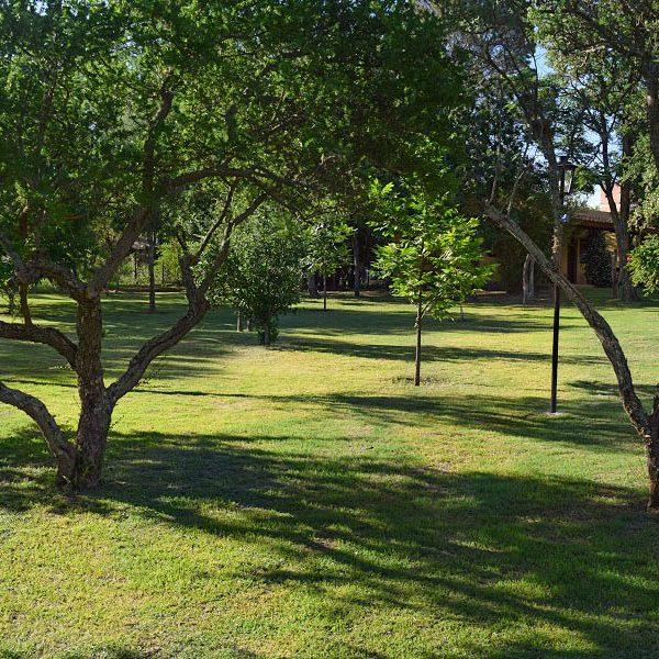 Parque con vegetación y flora autóctona